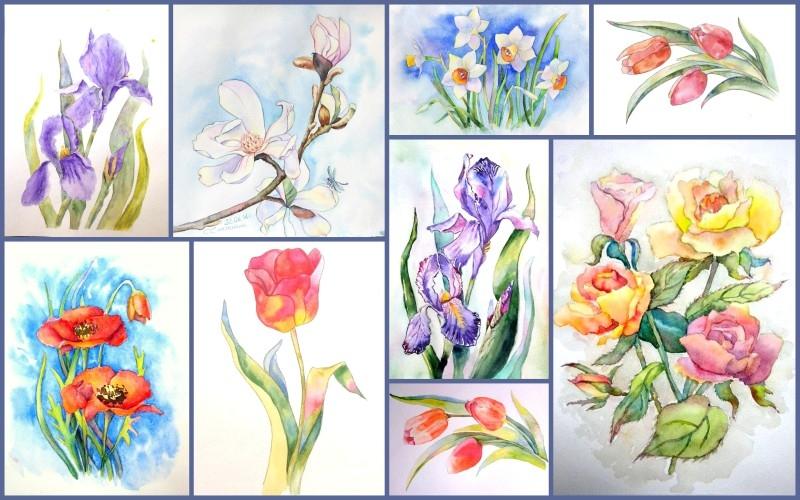 курсы в москве акварели цветы регистрации заявлений Канцелярский